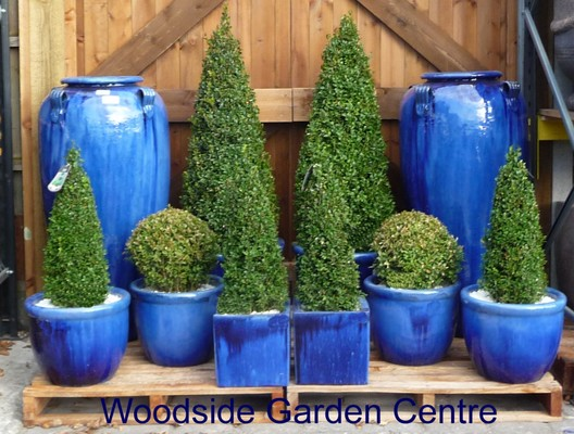 Blue Garden Pots Large blue glazed pot roll top planter woodside garden centre please call 01268 747888 for delivery cost to postcodes pa20phddabivkw workwithnaturefo
