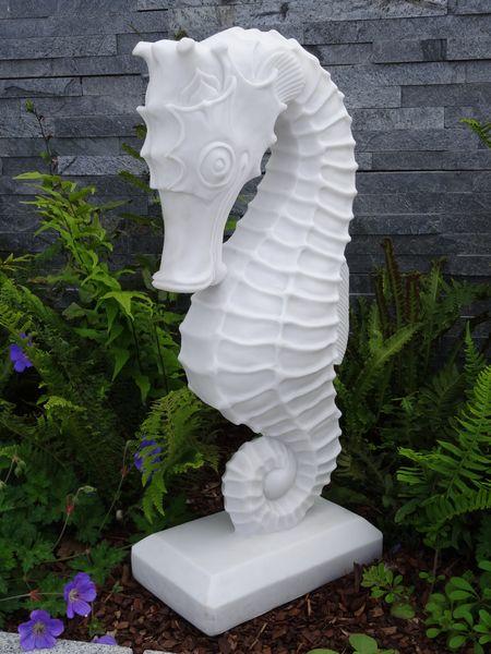 Seahorse Garden Statue Garden Ftempo