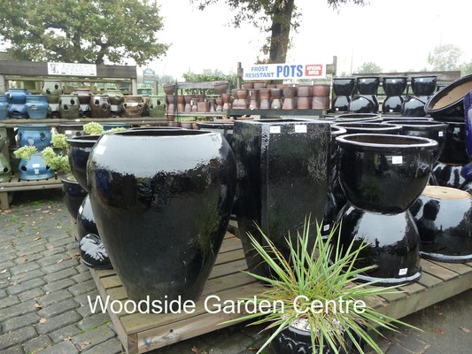 Woodside Garden Centre Essex & Extra Large Black Glazed Noodle Pot Planter | Woodside Garden Centre ...