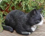 Black and White Cat Vivid Arts Home or Garden Ornament