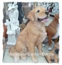Resin Extra large Real Life Golden Retriever Dog Garden Ornament