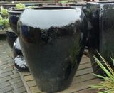 Tall Black Milan Glazed Pot Planters | Woodside Garden Centre | Pots To  Inspire